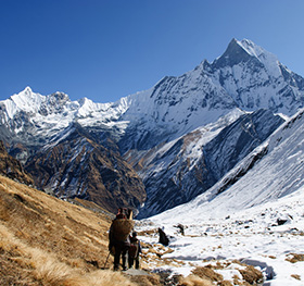 Annapurna Circuit Trek featured