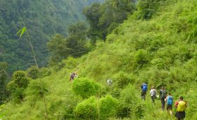 Nepal Luxury Treks