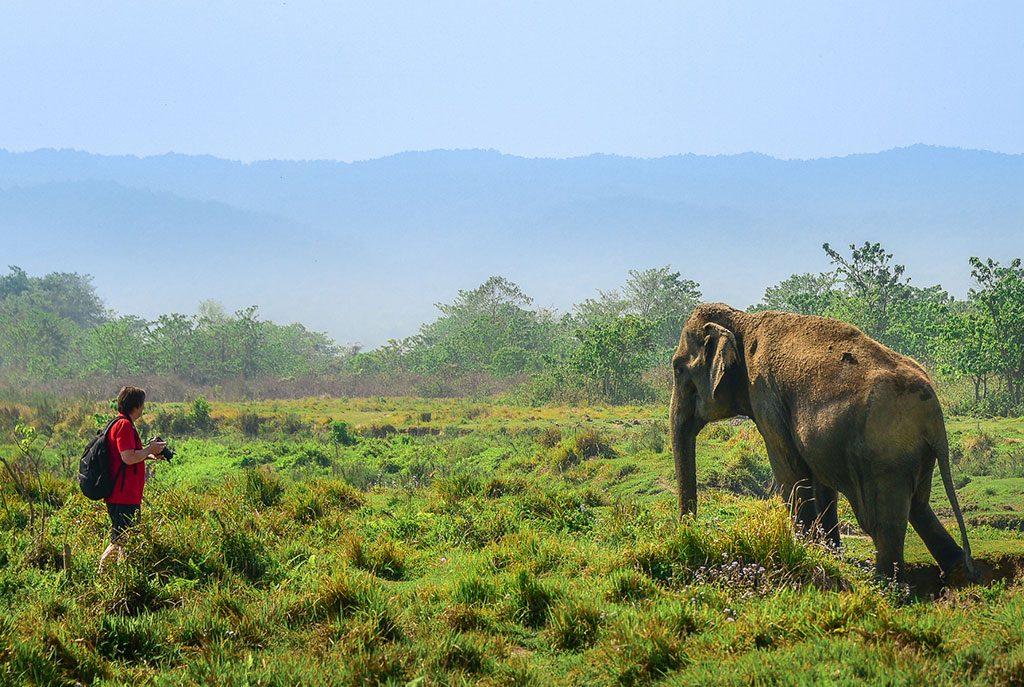 chitwan-national-park-jungle-safari5