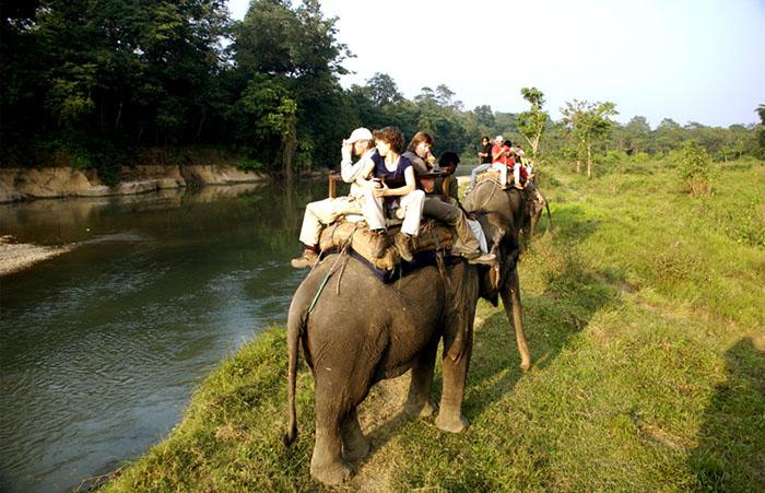 Jungle Safari Adventure Sports in Nepal